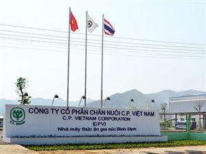 Thuận Phát triển khai dịch vụ bảo vệ nhà máy của Công ty C.P Việt Nam