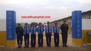 Thuận Phát triển khai dự án bảo vệ KCN Fancy tại Hưng Yên